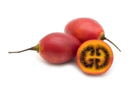 Tomate-arbol